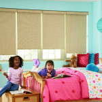 Roller shades - Burnaby