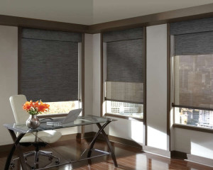 sun shades double roller blind