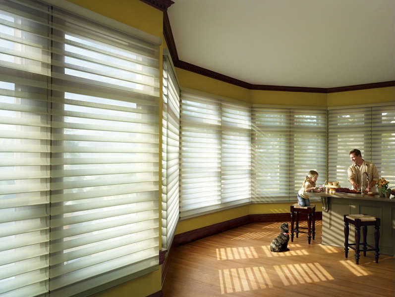 silhouette glow that shadings hunter windows window sheers glowing with douglas blinds custom