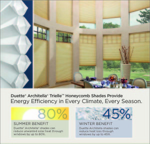 duette honeycomb blind saving energy in bay window